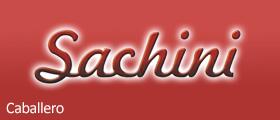 SACHINI