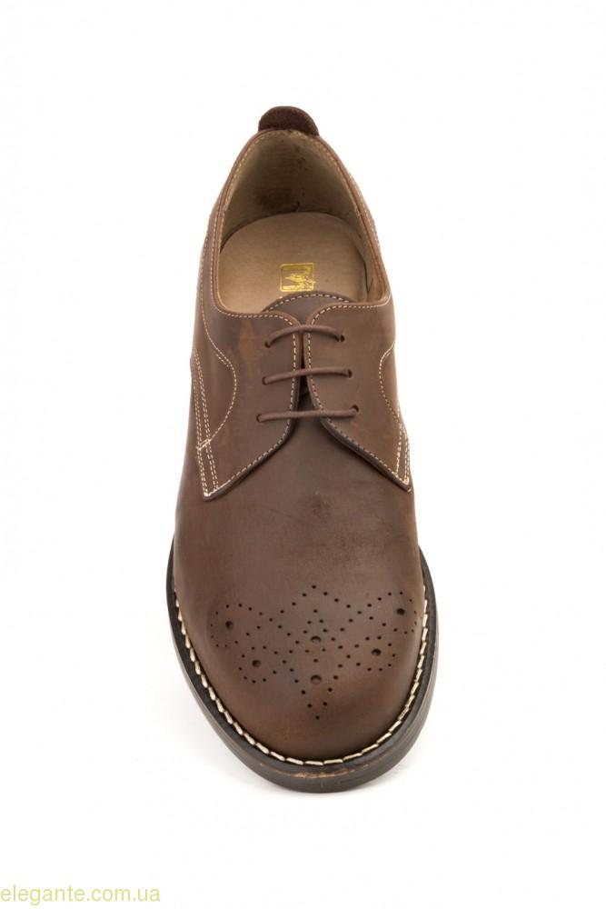 Чоловічі туфлі SCN6 коричневі 0