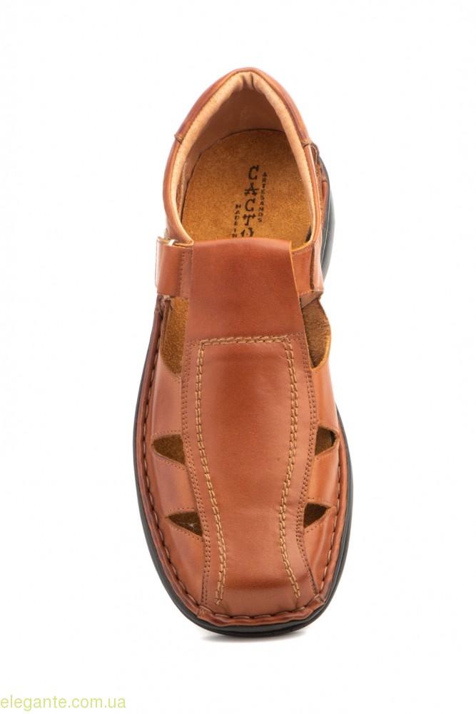 Чоловічі сандалі CACTUS коричневі 0