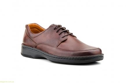 Мужские туфли SCN CRISPINOS коричневые
