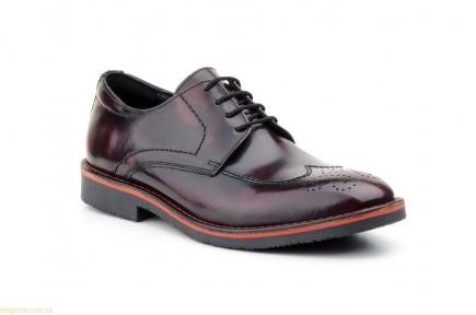 Чоловіч туфлі PEPE AGULLO бордові